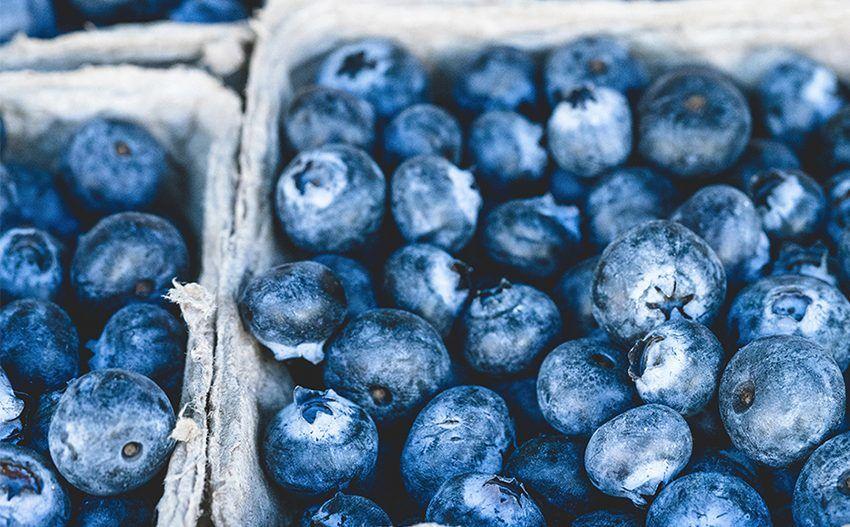 Top Foods & Nutrients For Healthy Eyes