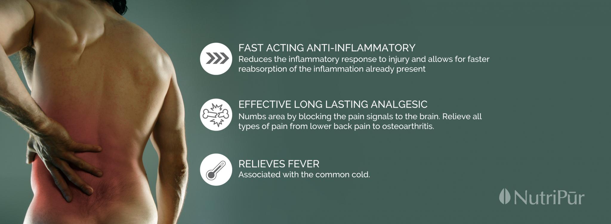 Nutripur - Inflammatol - anti-inflammatory, analgesic, fever, pain relief