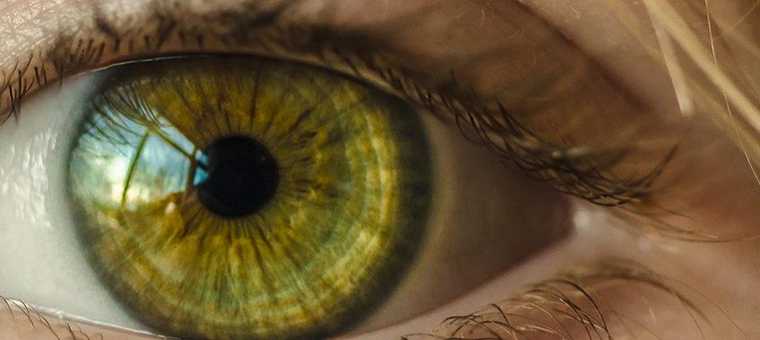 https://nutripur.com/es/healthguide/fatiga-ocular/